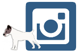 militerriers-instagram-logo-2-150x109